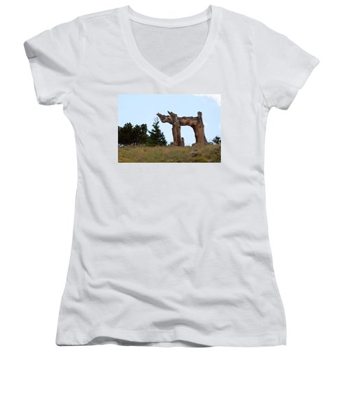 Pi In The Sky Women's V-Neck (Athletic Fit)