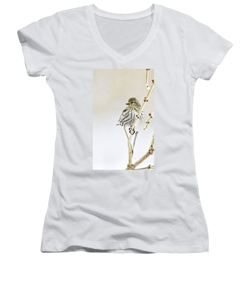 Pine Siskin Women's V-Neck