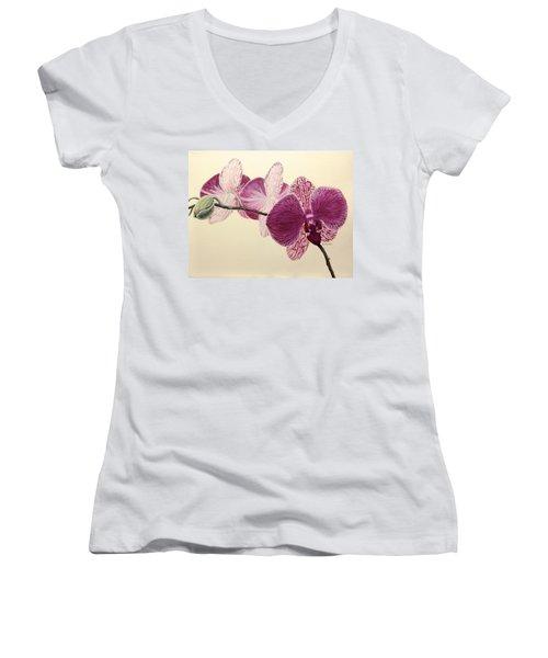 Pink Orchid Women's V-Neck