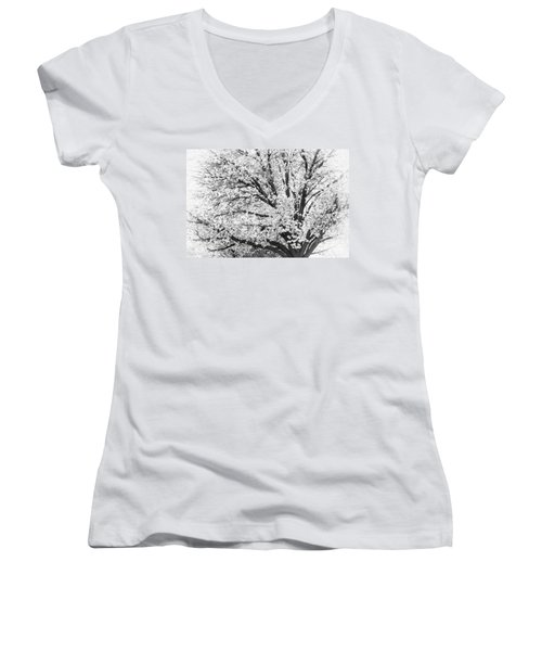Women's V-Neck T-Shirt (Junior Cut) featuring the photograph Poetry Tree by Roselynne Broussard