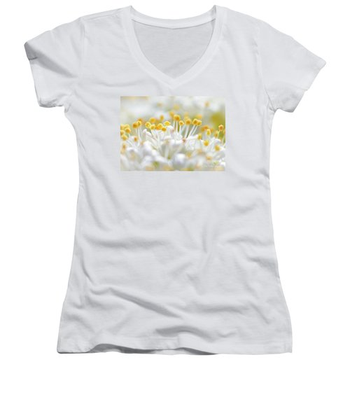 Pollen Women's V-Neck T-Shirt (Junior Cut) by David Perry Lawrence