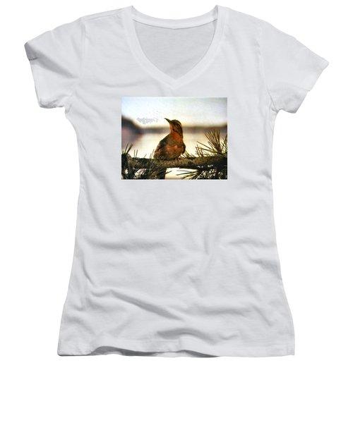 Population 51201 Women's V-Neck T-Shirt