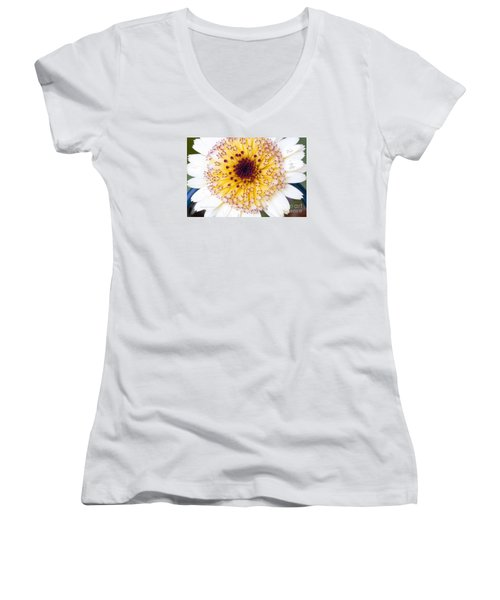 Pot Marigold Citrus Smoothies Women's V-Neck (Athletic Fit)