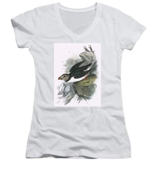 Puffin Women's V-Neck T-Shirt (Junior Cut)