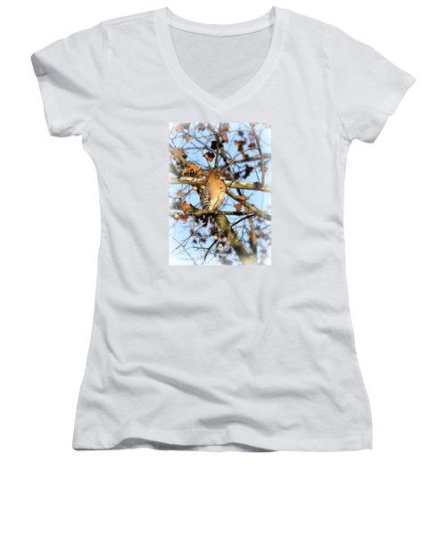 Red-shouldered Hawk - Img_7943 Women's V-Neck T-Shirt
