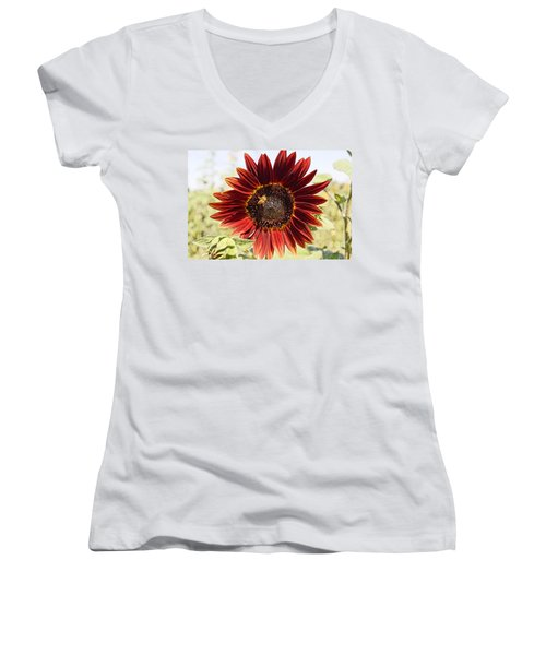 Red Sunflower And Bee Women's V-Neck (Athletic Fit)