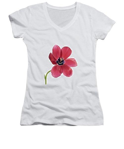 Red Transparent Tulip Women's V-Neck