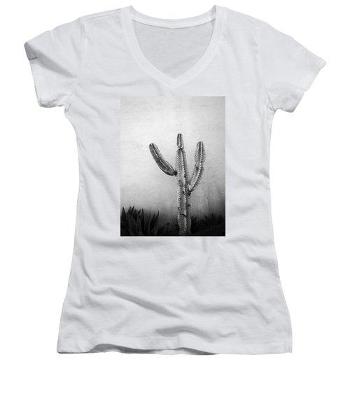 Ribbing Women's V-Neck T-Shirt (Junior Cut) by David Pantuso
