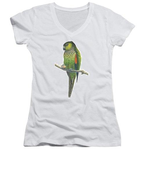 Rock Parakeet Women's V-Neck T-Shirt (Junior Cut) by Anonymous