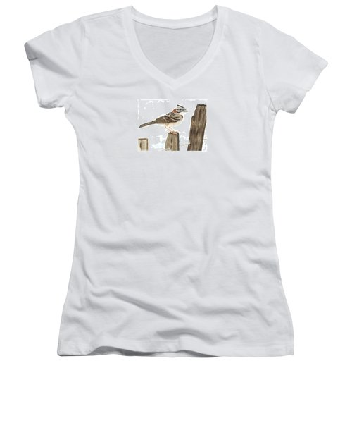 Rufous-collared Sparrow Women's V-Neck T-Shirt (Junior Cut) by Cindy Hitchcock