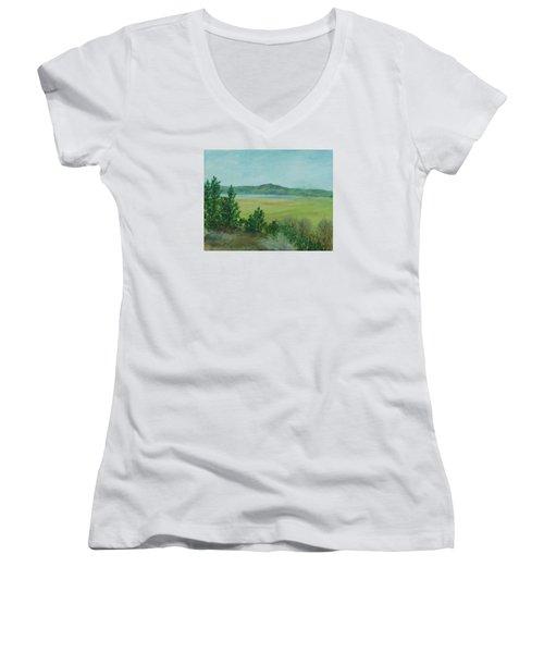 Rural Landscape Art Original Colorful Oil Painting Swan Lake Oregon  Women's V-Neck T-Shirt (Junior Cut) by Elizabeth Sawyer