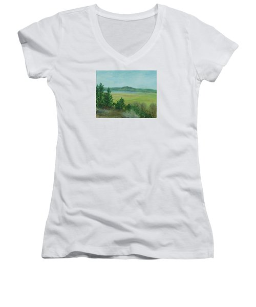 Rural Landscape Art Original Colorful Oil Painting Swan Lake Oregon  Women's V-Neck T-Shirt