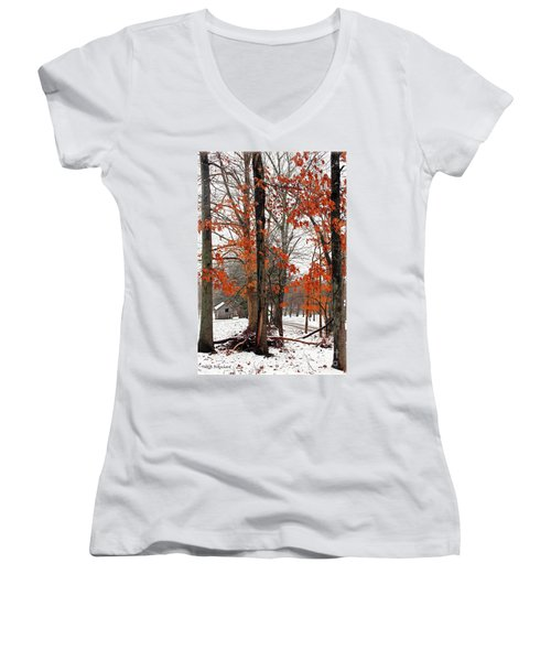 Rustic Winter Women's V-Neck T-Shirt