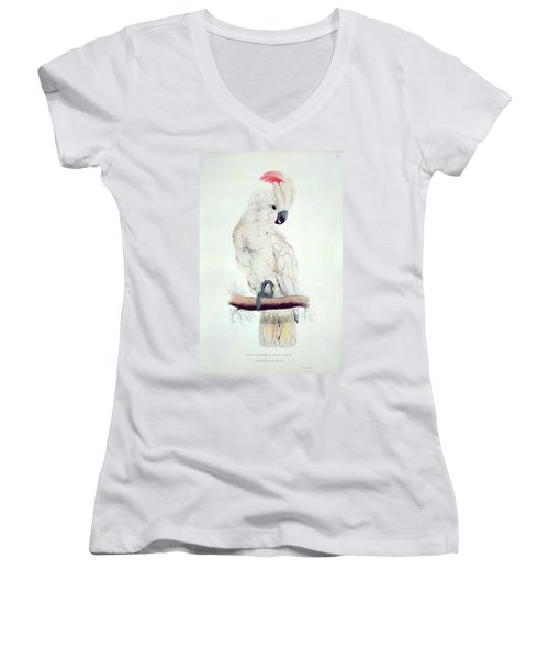 Salmon Crested Cockatoo Women's V-Neck T-Shirt (Junior Cut) by Edward Lear