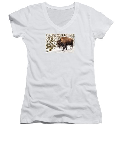 Women's V-Neck T-Shirt (Junior Cut) featuring the photograph Scary Bison by Sue Smith
