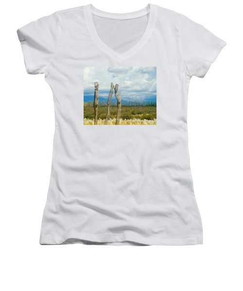 Sculpture In The Andes Women's V-Neck T-Shirt