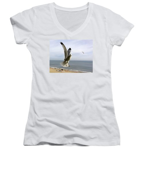 Inquisitive Seagull Women's V-Neck (Athletic Fit)