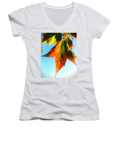 Women's V-Neck T-Shirt (Junior Cut) featuring the photograph Season's Change by James Aiken