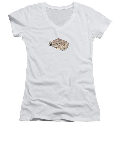 Sidewinder Women's V-Neck T-Shirt (Junior Cut) by Cindy Hitchcock