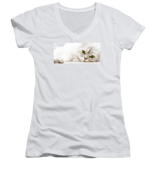 Women's V-Neck T-Shirt (Junior Cut) featuring the photograph Silver Shaded Persian by Carsten Reisinger