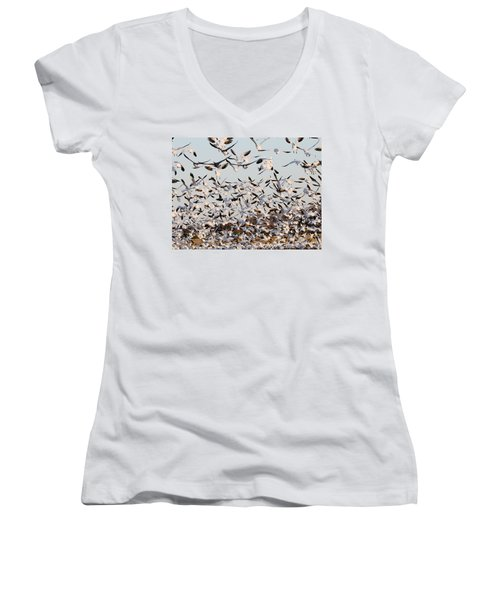 Snow Geese Takeoff From Farmers Corn Field. Women's V-Neck T-Shirt