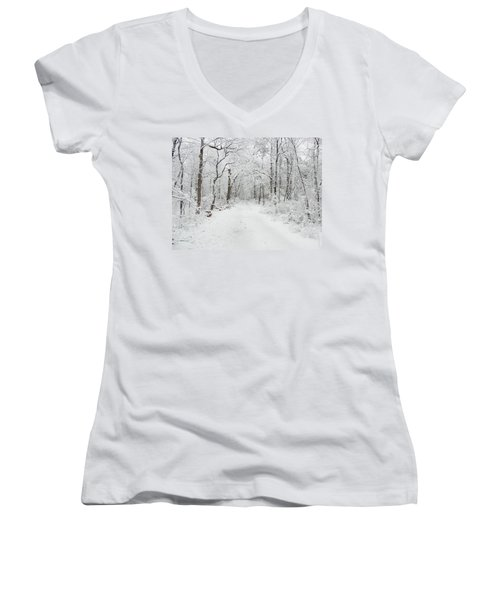 Snow In The Park Women's V-Neck T-Shirt