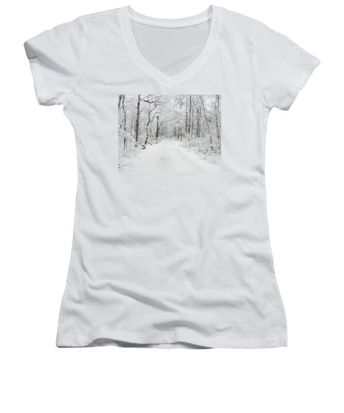 Snow In The Park Women's V-Neck (Athletic Fit)