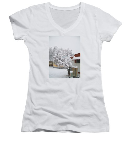 Women's V-Neck T-Shirt (Junior Cut) featuring the photograph Snowy Lilac by Jewel Hengen