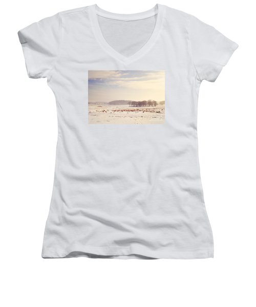 Snowy Valley Women's V-Neck (Athletic Fit)
