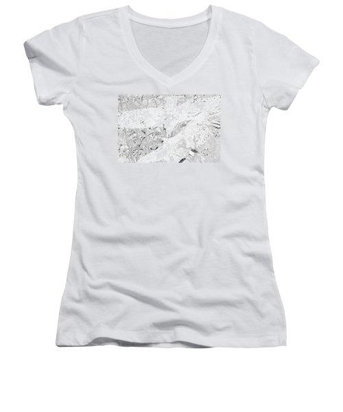 Soaring Hawks Indian Spirit White Gold Women's V-Neck T-Shirt