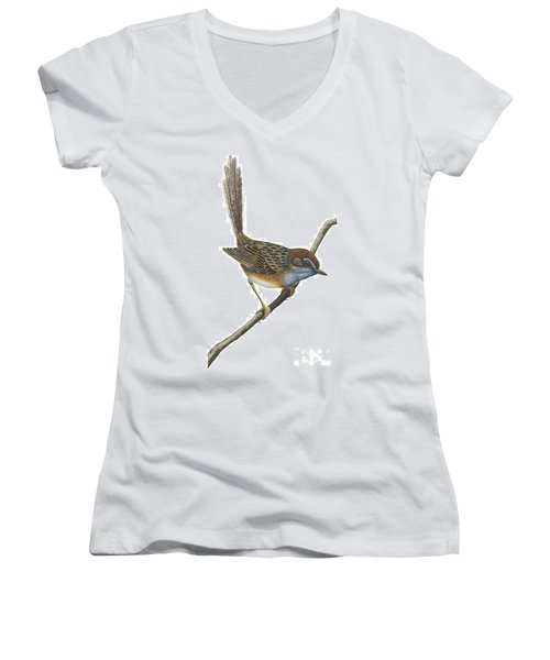 Southern Emu Wren Women's V-Neck T-Shirt (Junior Cut) by Anonymous