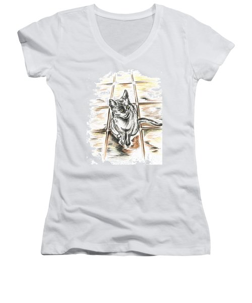 Spanish Cat Waiting Women's V-Neck T-Shirt