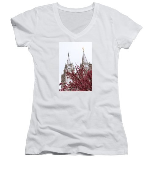 Spring At The Temple Women's V-Neck T-Shirt
