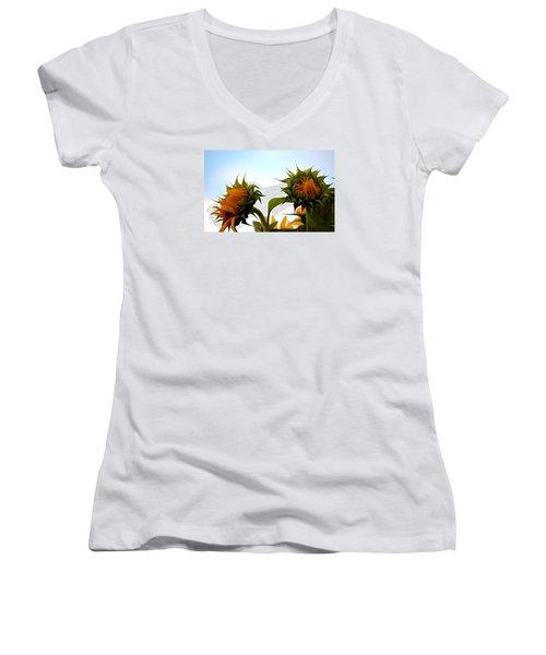 Spring Sun Shine Women's V-Neck T-Shirt