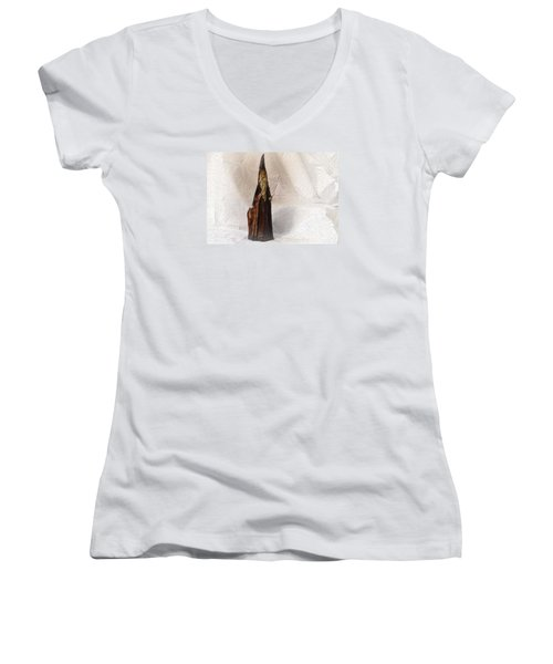 Women's V-Neck T-Shirt (Junior Cut) featuring the photograph St Nicholas With Fawn by Nadalyn Larsen