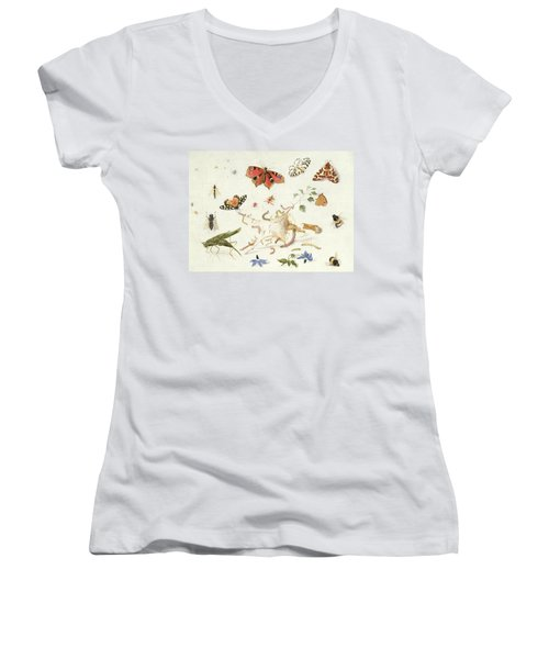 Study Of Insects And Flowers Women's V-Neck T-Shirt