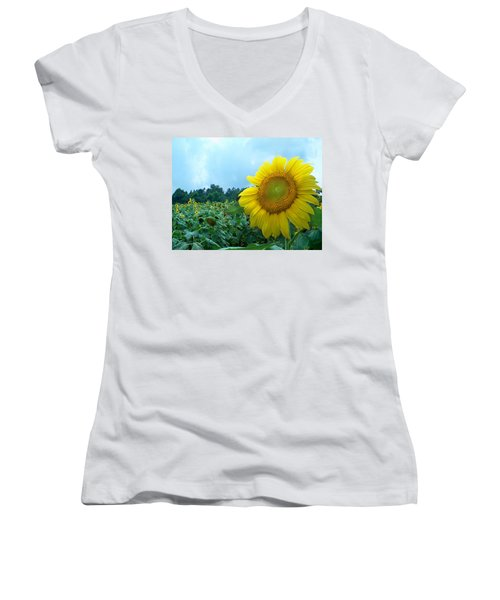 Sunflower Field Of Yellow Sunflowers By Jan Marvin Studios  Women's V-Neck T-Shirt