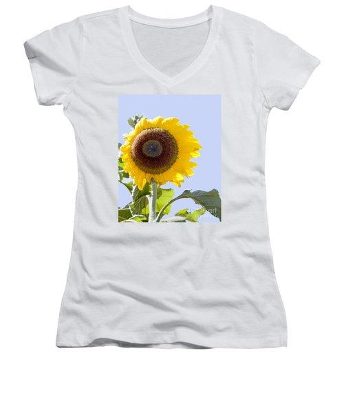 Sunflower In The Blue Sky Women's V-Neck T-Shirt (Junior Cut) by David Millenheft