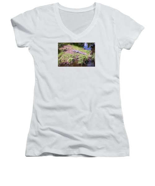 Sunny Gator  Women's V-Neck T-Shirt (Junior Cut) by Joseph Baril