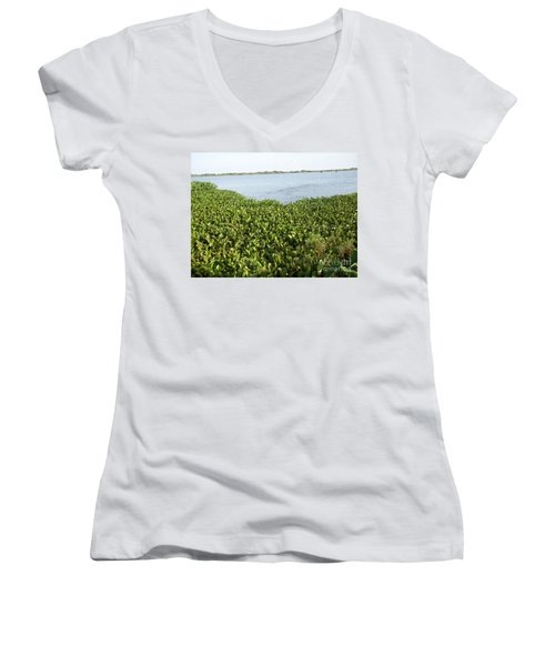 Swamp Hyacinths Water Lillies Women's V-Neck T-Shirt (Junior Cut) by Joseph Baril