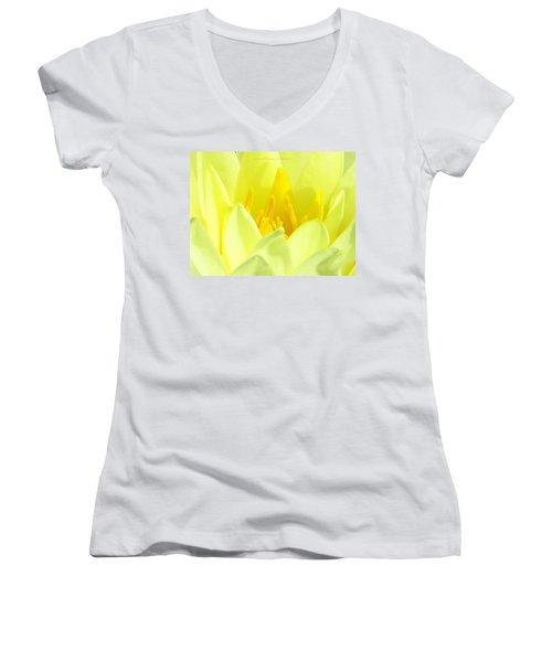 Swarna Kamal Women's V-Neck T-Shirt