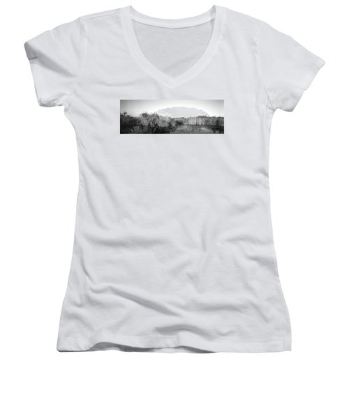 Tall Grass At The Lakeside, Anhinga Women's V-Neck (Athletic Fit)