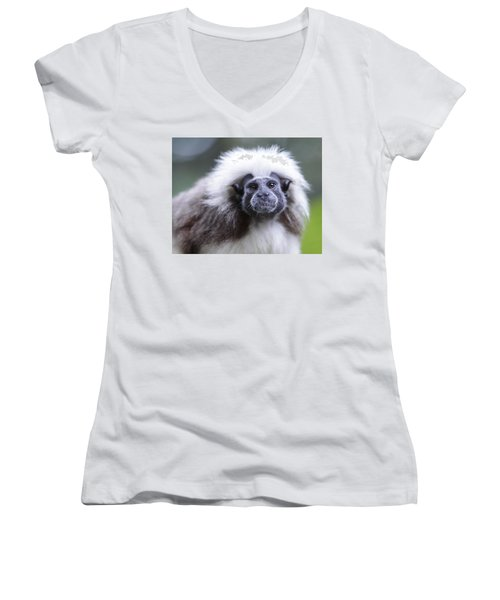 Tamarins Face Women's V-Neck (Athletic Fit)