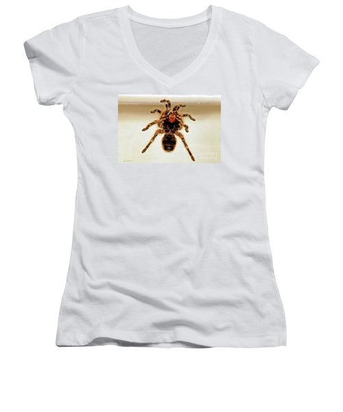 Women's V-Neck T-Shirt (Junior Cut) featuring the photograph Tarantula Hanging On Glass by Susan Wiedmann