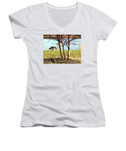 Testing The Waters Women's V-Neck T-Shirt (Junior Cut) by Pamela Hyde Wilson