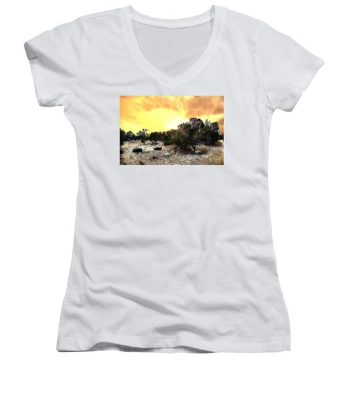 Texas Hill Country Women's V-Neck (Athletic Fit)