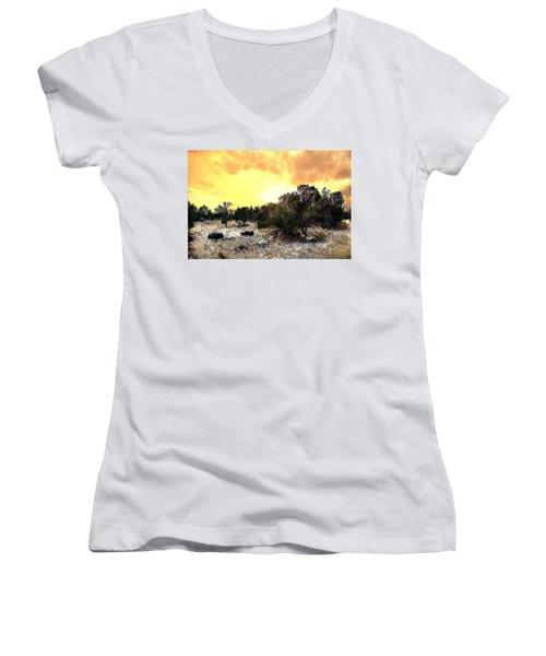 Texas Hill Country Women's V-Neck T-Shirt