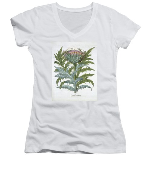 The Cardoon, From The Hortus Women's V-Neck T-Shirt (Junior Cut) by German School