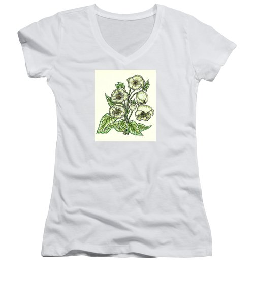 Women's V-Neck T-Shirt (Junior Cut) featuring the drawing The Helleborous by VLee Watson