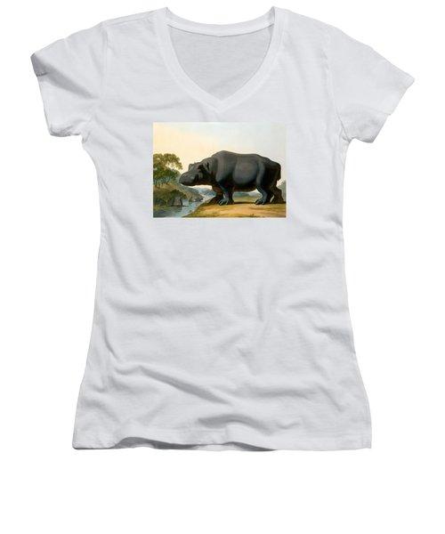 The Hippopotamus, 1804 Women's V-Neck T-Shirt (Junior Cut) by Samuel Daniell